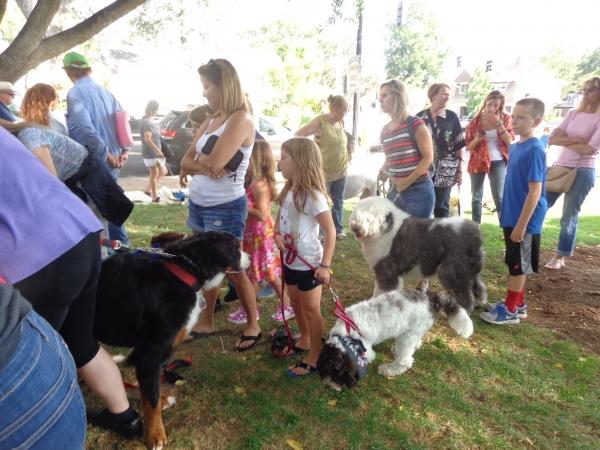 Dog Show Pleasanton